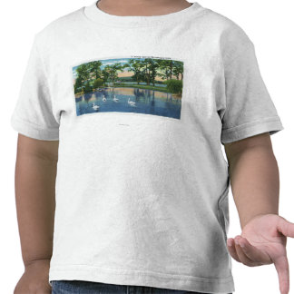 Scenic View of Swans on the Lake Tee Shirts