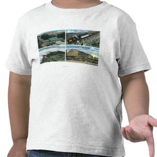 Scenic Views of the Trip towards the Summit Shirt