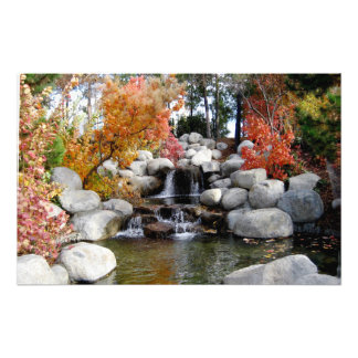 Scenic Waterfall Colorful Trees and Rocks Poster