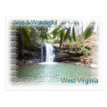 Scenic West Virginia Waterfall Postcards