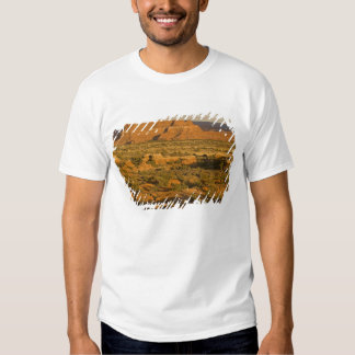 Scenic winter desert landscape on the way into 2 t shirt