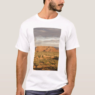 Scenic winter desert landscape on the way into T-Shirt