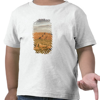 Scenic winter desert landscape on the way into t shirt