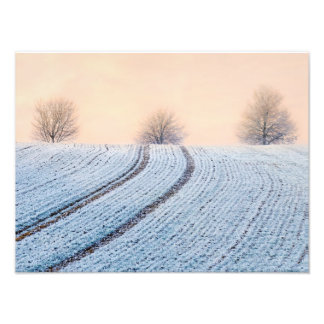 Scenic Winter Landscape Trees Hoarfrost Paperprint Photo Print