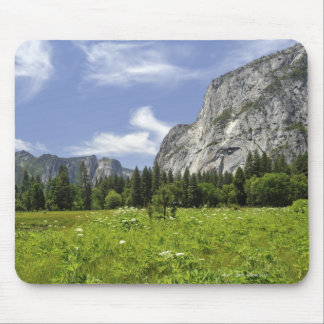 Scenic Yosemite Valley, California Mouse Mat