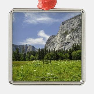 Scenic Yosemite Valley, California Silver-Colored Square Decoration