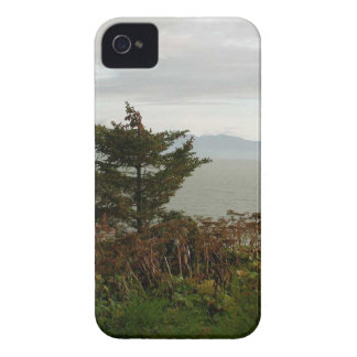 Scenics Kachemak Bay iPhone 4 Cases