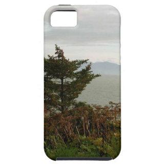 Scenics Kachemak Bay iPhone 5 Cases