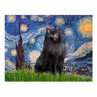 Schipperke 2 - Starry Night Postcard