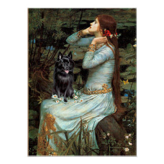 Schipperke 4 - Ophelia Seated Poster