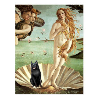 Schipperke 5 - Birth of Venus Postcard