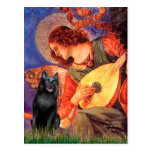 Schipperke 5 - Mandolin Angel Post Cards