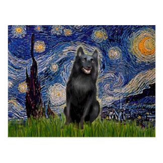 Schipperke 5 - Starry Night Postcard