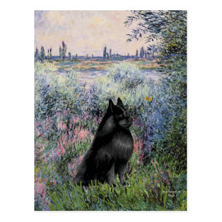Schipperke 6 - By the Seine Postcard