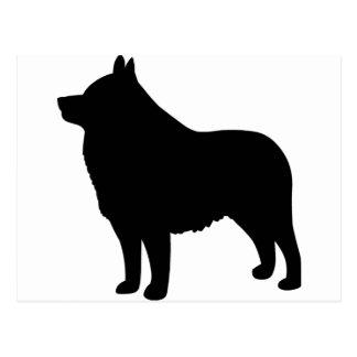 Schipperke Dog Postcard