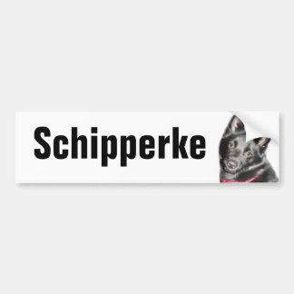 Schipperke Picture Bumper Sticker