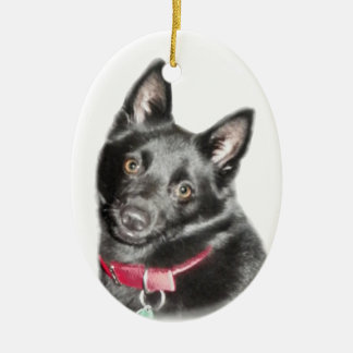 Schipperke Picture Ceramic Oval Decoration
