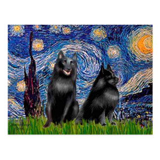 Schipperkees (two,5&6) - Starry Night Postcard