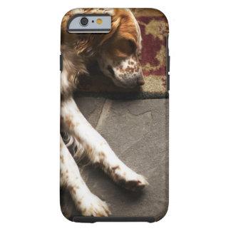 Schlafender Llewelyn Setzer Tough iPhone 6 Case