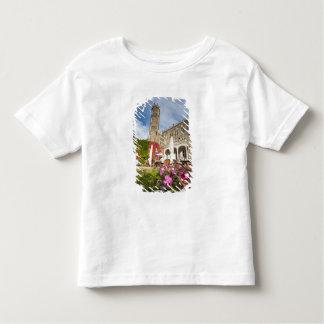 Schloss Eckberg Castle, Germany Toddler T-Shirt