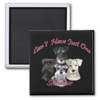 Schnauzer Can t Have Just One Fridge Magnets