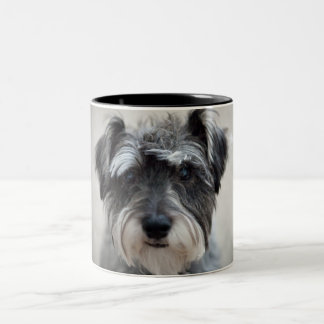 Schnauzer Dog Coffee Cup Two-Tone Coffee Mug