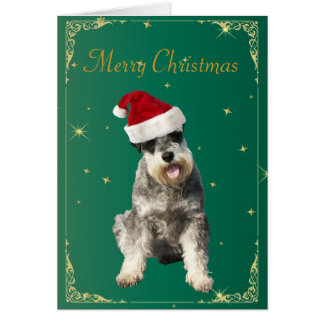 Schnauzer dog in santa hat holiday christmas card