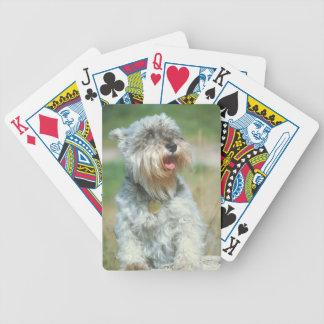 Schnauzer Dog Playing Cards