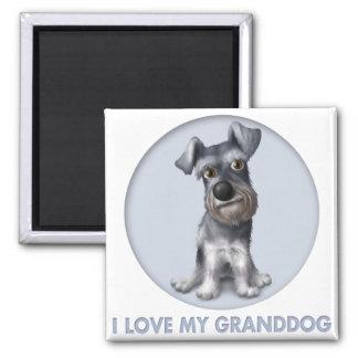 Schnauzer Granddog Magnet
