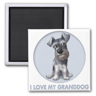Schnauzer Granddog Refrigerator Magnets