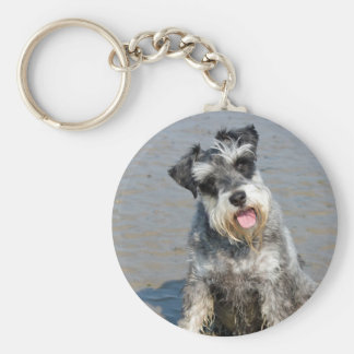 Schnauzer miniature dog cute beautiful photo beach key ring