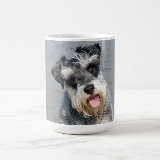 Schnauzer miniature dog cute photo at the beach coffee mug