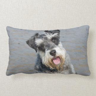 Schnauzer miniature dog cute photo, cushion throw pillow