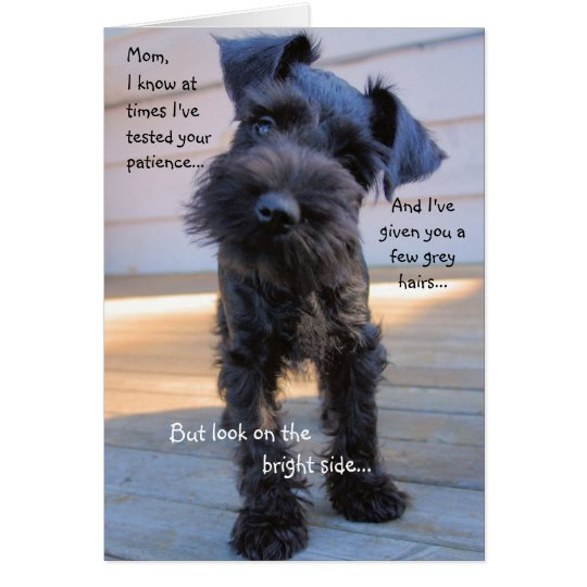 Schnauzer Mother's Day Greeting Card