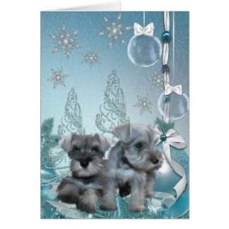 Schnauzer Puppies Christmas Card