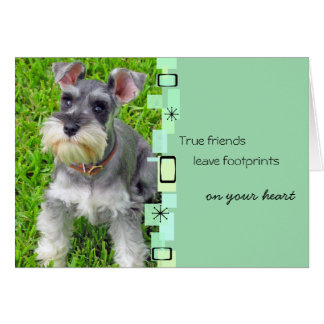 Schnauzer Puppy Birthday Greeting Card