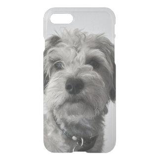 Schnauzer Puppy Portrait Photo iPhone 8/7 Case