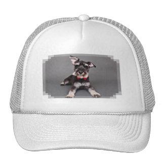 Schnauzer - Tom Dooley Trucker Hats