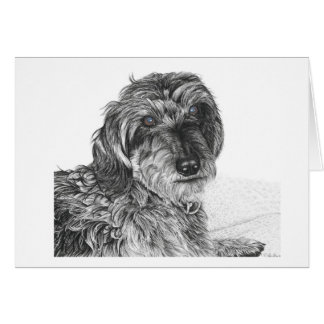 Schnell - Blank Greetings Card