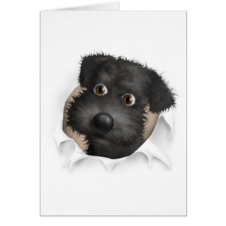 Schnoodle (Black) Busting Out Card