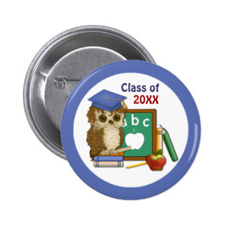 Scholar Owl Graduation 2015 Pins