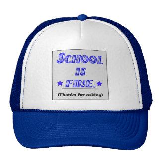 School Is Fine Mesh Hat