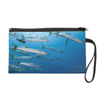 School of blackfin barracuda (Sphyraena qenie) Wristlet Clutches