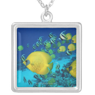 School of Butterfly Fish Swimming on the Seabed Silver Plated Necklace
