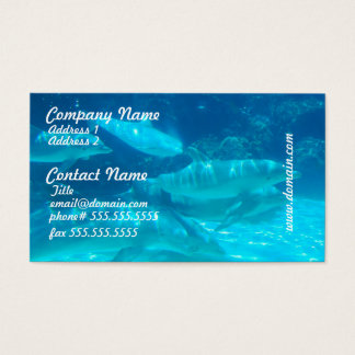 School of Dolphins Business Cards