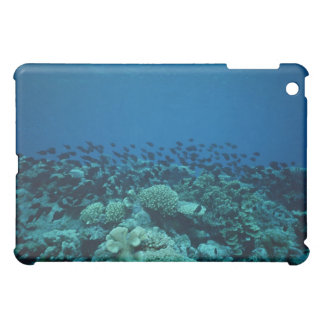 School of Fish 10 iPad Mini Cases
