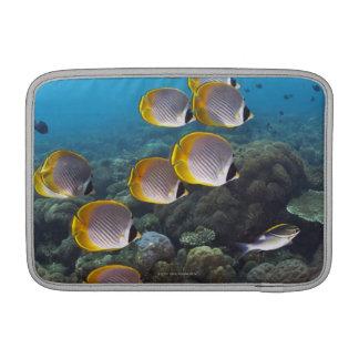 School of Fish 2 Sleeve For MacBook Air