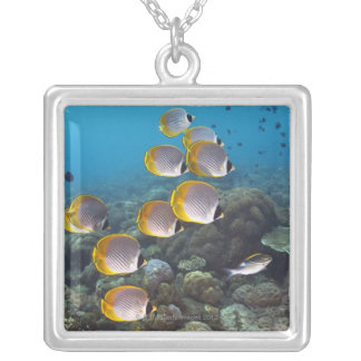 School of Fish 2 Square Pendant Necklace
