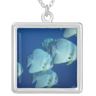 School of Fish 5 Silver Plated Necklace
