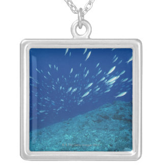 School of Fish 6 Silver Plated Necklace